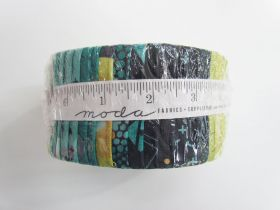 Great value Dance In Paris Jelly Roll available to order online New Zealand